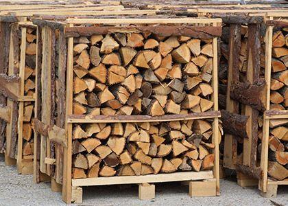 Tűzifa értékesítés